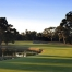 Commonwealth Golf Club featured